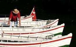 Barca su un lago Immagine Stock