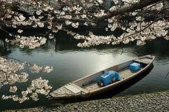 Barca sul fiume. immagini stock