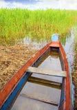 Barca in un'alta canna Fotografie Stock