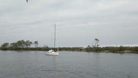 Barca a vela che naviga lentamente attraverso la baia del porticciolo Il lago Ontario, Canada stock footage
