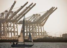 Barca a vela con le grandi gru Immagini Stock