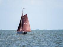 Barca a vela con le vele marroni che navigano sul lago IJsselmeer vicino a Enkhui immagine stock