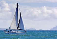 Barca a vela ed isola di Anacapa immagini stock libere da diritti