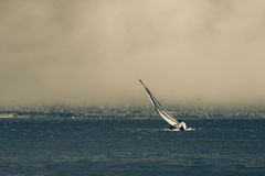 Barca a vela in San tempestoso Francisco Bay Fotografie Stock