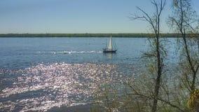 Barca a vela sola sul fiume Parana in Rosario Argentina Fotografia Stock Libera da Diritti
