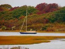 Barca a vela sola sullo stagno Fotografia Stock