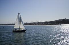 Barca a vela sull'acqua Fotografia Stock