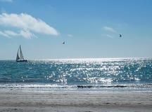 Barca a vela sull'oceano Pacifico con gli uccelli fotografie stock libere da diritti
