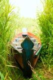 Barca verde in un'alta canna Fotografie Stock Libere da Diritti