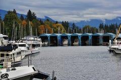 Barca, yacht nel porto del carbone, Vancouver del centro, Columbia Britannica, Canada Immagini Stock