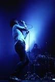 D MacFarlane, cantante dei fuochi amici Fotografie Stock Libere da Diritti