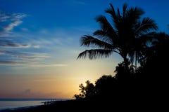 barcelo cana多米尼加共和国的punta共和国日出 免版税图库摄影