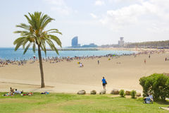 Barcelona Beach ,Spain. Beautiful Scene Barcelona Beach ,Spain Royalty Free Stock Images