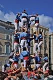 barcelona castellers Royaltyfri Bild