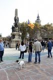 Barcelona, Catalonia, Espanha, o 27 de outubro de 2017: o pessoa comemora o voto para declarar a independência de Catalunya perto imagem de stock royalty free