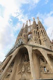 Barcelona cathedral Cathedral - Spain Royalty Free Stock Image