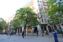 Tree, neighbourhood, city, street, urban, area, plant, downtown, pedestrian, building, mixed, use, plaza, town, square, road, faca. Photo of tree, neighbourhood stock photo