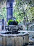 Barcelona domkyrka royaltyfri foto