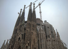 Barcelona domkyrka Arkivfoton