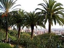 Barcelona door palmen Stock Afbeeldingen
