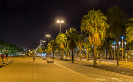 Barcelona embankment in night - Catalonia, Spain Royalty Free Stock Photography