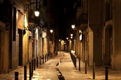 Barcelona Gothic quarter at night stock image