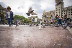Barcelona, Maj 07, 2017: Ludzie karmi gołębie w Placa De Catalunya blisko losu angeles Rambla Zdjęcia Stock