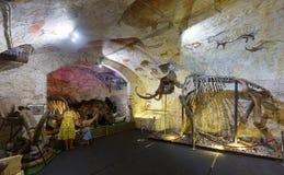 Barcelona mamuta muzeum Fotografia Stock