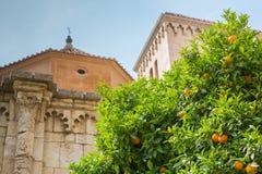 Barcelona, orange träd och sikt av den gamla staden Royaltyfri Bild