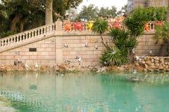 barcelona park zdjęcia royalty free