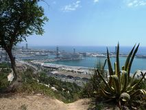 Barcelona Port in the sunshine. Barcelona Port taken from the hillside above with plants in the foreground Stock Image
