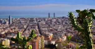 Barcelona skyline. Barcelona behind a cactus Stock Images