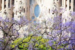 Barcelona, Spain. BARCELONA SPAIN - MAY 28: La Sagrada Familia - the impressive cathedral designed by Gaudi, which is being build since 19 March 1882 and is not royalty free stock photo