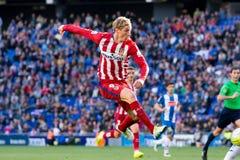 Fernando Torres plays at the La Liga match between RCD Espanyol and Atletico de Madrid Royalty Free Stock Photo