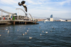 Barcelona, Spain - APRIL 08: Rambla de Mar, a modern bridge in t. He Barcelona port area with people and birds on April 08.2014 in Barcelona, Spain as editorial Stock Image