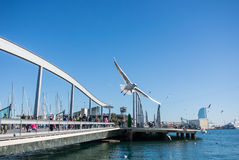 BARCELONA, SPAIN - FEBRUARY 12, 2014: A view to a pier with yachts, an embankment and a flying seagull at Barcelona port. Catalonia, Spain Royalty Free Stock Images