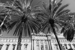 Barcelona Spain: harbor. Barcelona Catalunya, Spain: the old harbor and palm trees. Black and white Stock Images