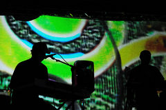 Animal Collective band performs at Barcelona Royalty Free Stock Photography