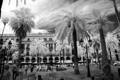 BARCELONA, SPAIN - JUNE 09: Plaza Real on June, 2013 in Barcelon Royalty Free Stock Photo