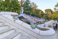Lizard in the Park Guell, Barcelona stock images