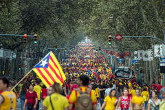 BARCELONA, SPAIN - SEPT. 11: People manifesting ingependence on Stock Image