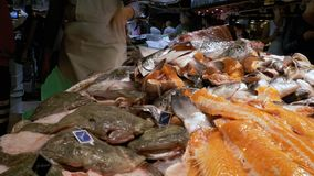 Counter with Seafood in La Boqueria Fish Market. Barcelona. Spain. BARCELONA, SPAIN, SEPTEMBER 22, 2017: Counter with Seafood in La Boqueria Fish Market stock footage