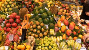Showcase with Fresh Tropical Fruits and Vegetables in La Boqueria Food Market. Barcelona, Spain. BARCELONA, SPAIN, SEPTEMBER 22, 2017: Showcase with Fresh stock footage
