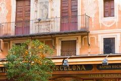 BARCELONA, SPANIEN - 16. FEBRUAR 2017: Orangenbaum auf dem Hintergrund eines europäischen Hauses in der Mitte der Stadt Stockbild