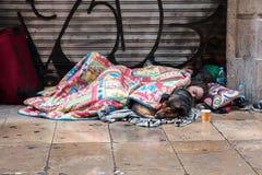 BARCELONA, SPANIEN, Februari 4, 2018 ung grabb för A, en flicka och en hund arkivfoto