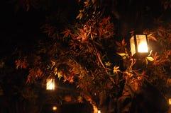 Barcelona Spanien nattskott med lyktor royaltyfri foto