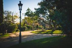 Barcelona, Spanien - 24 11 2018: Schöner Tag in Ciutadella-Park, Ansicht eines Weges mit grünen Bäumen lizenzfreie stockfotografie