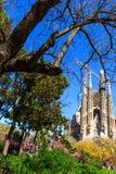 Barcelona - Spring in park near Cathedral La Sagrada Familia Royalty Free Stock Photography