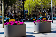 Barcelona-Straße und -Taxis Stockbild