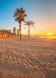 Barceloneta海滩在日出的巴塞罗那 免版税库存照片